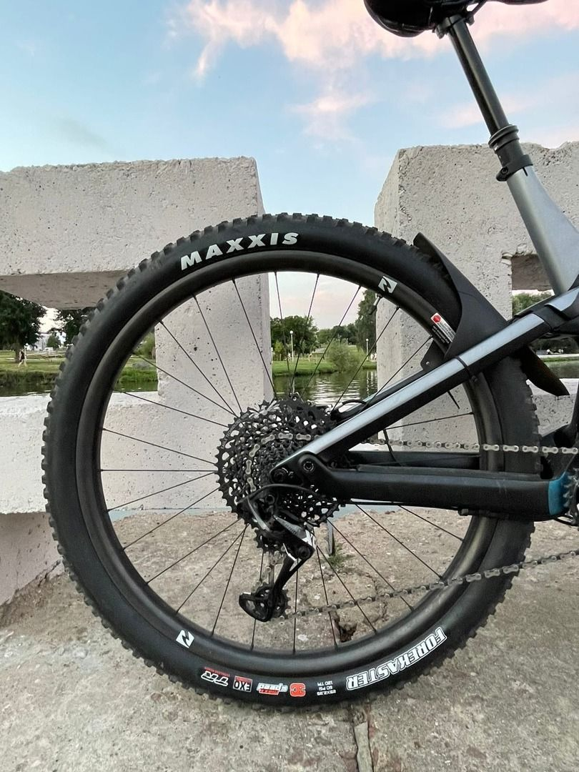 maxxis forecaster 29x2.35 (2шт)