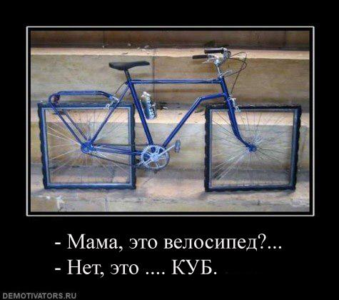 x_51984d64_S.jpg