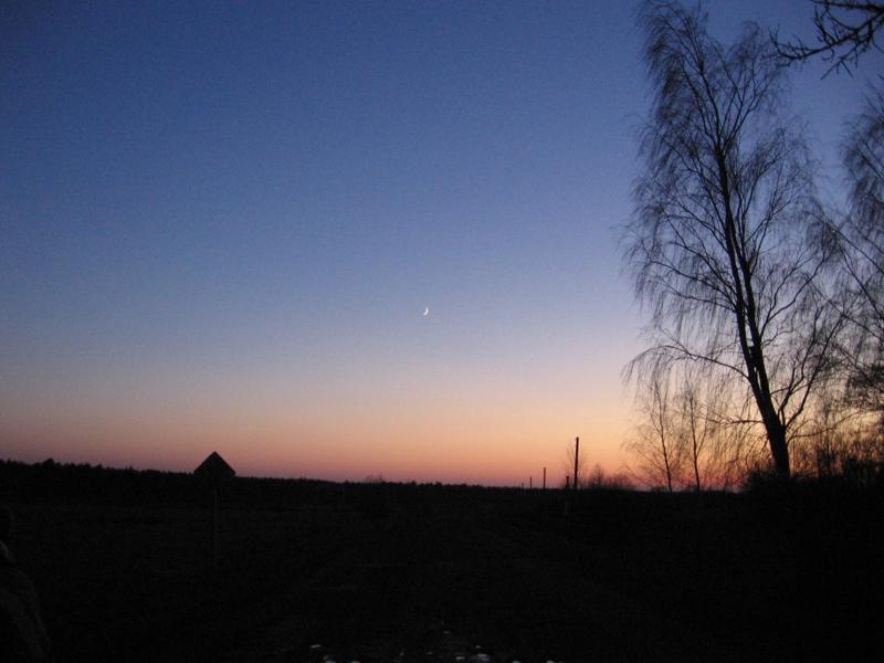23_evening.jpg