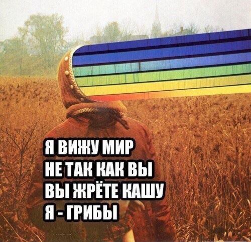 143195732089.jpg