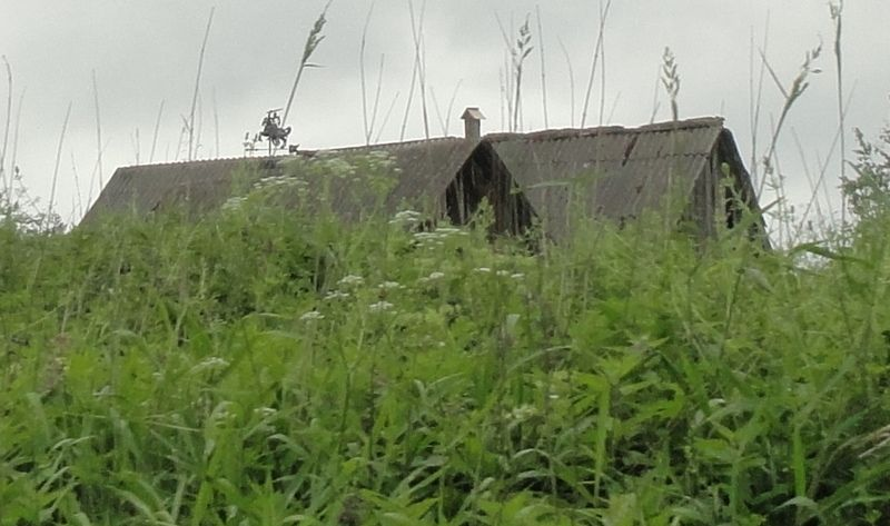 13. лошадь на крыше.JPG