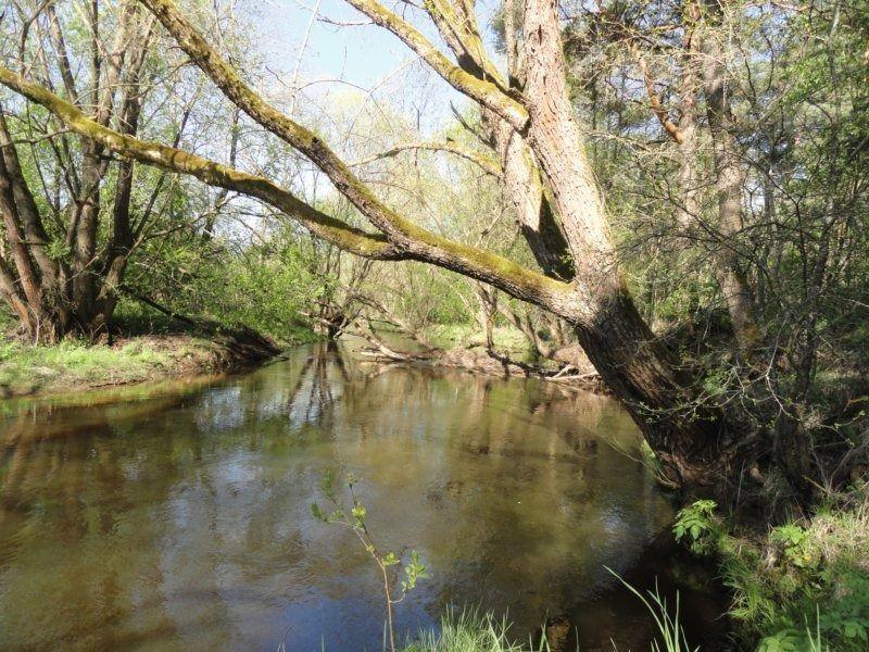3. река.JPG