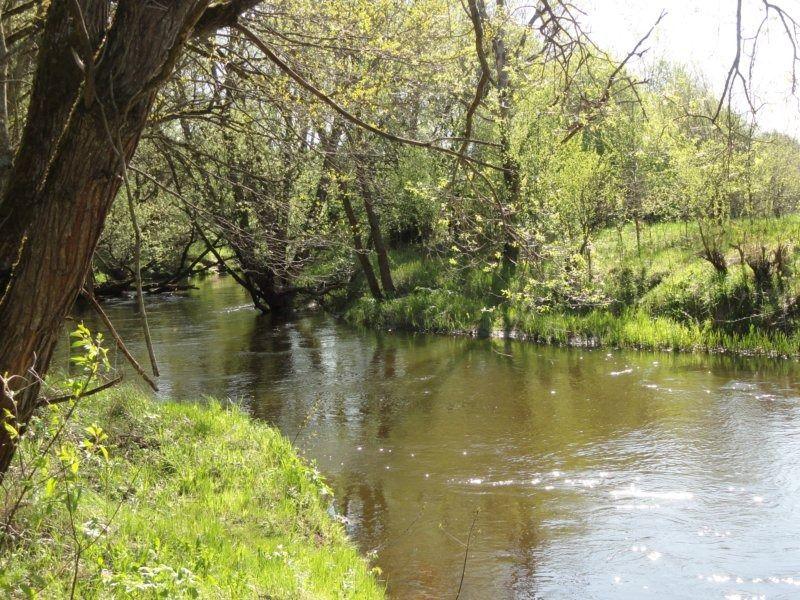 4. река.JPG
