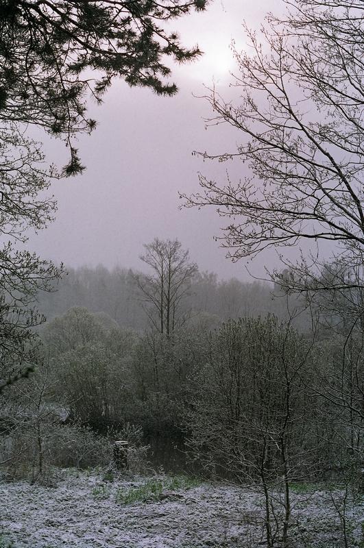 zima_4.jpg