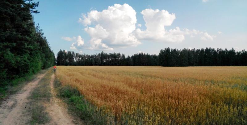 field__clouds_x.jpg