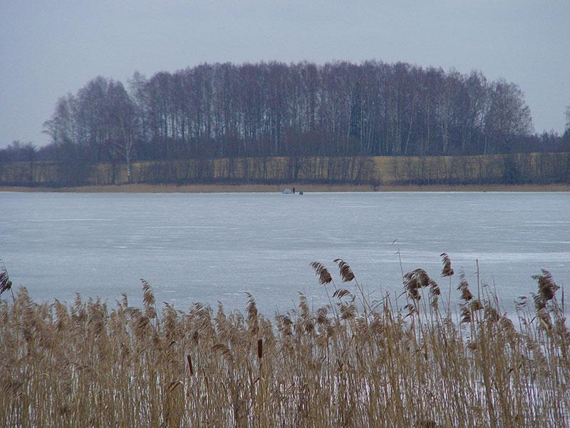 Cherapitskae29.jpg