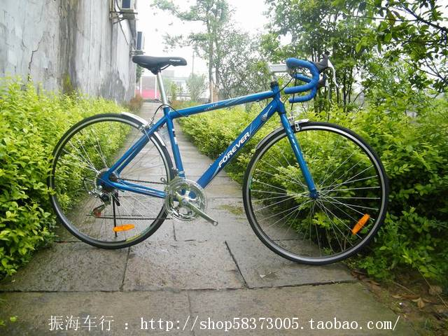velosiped_5.jpg