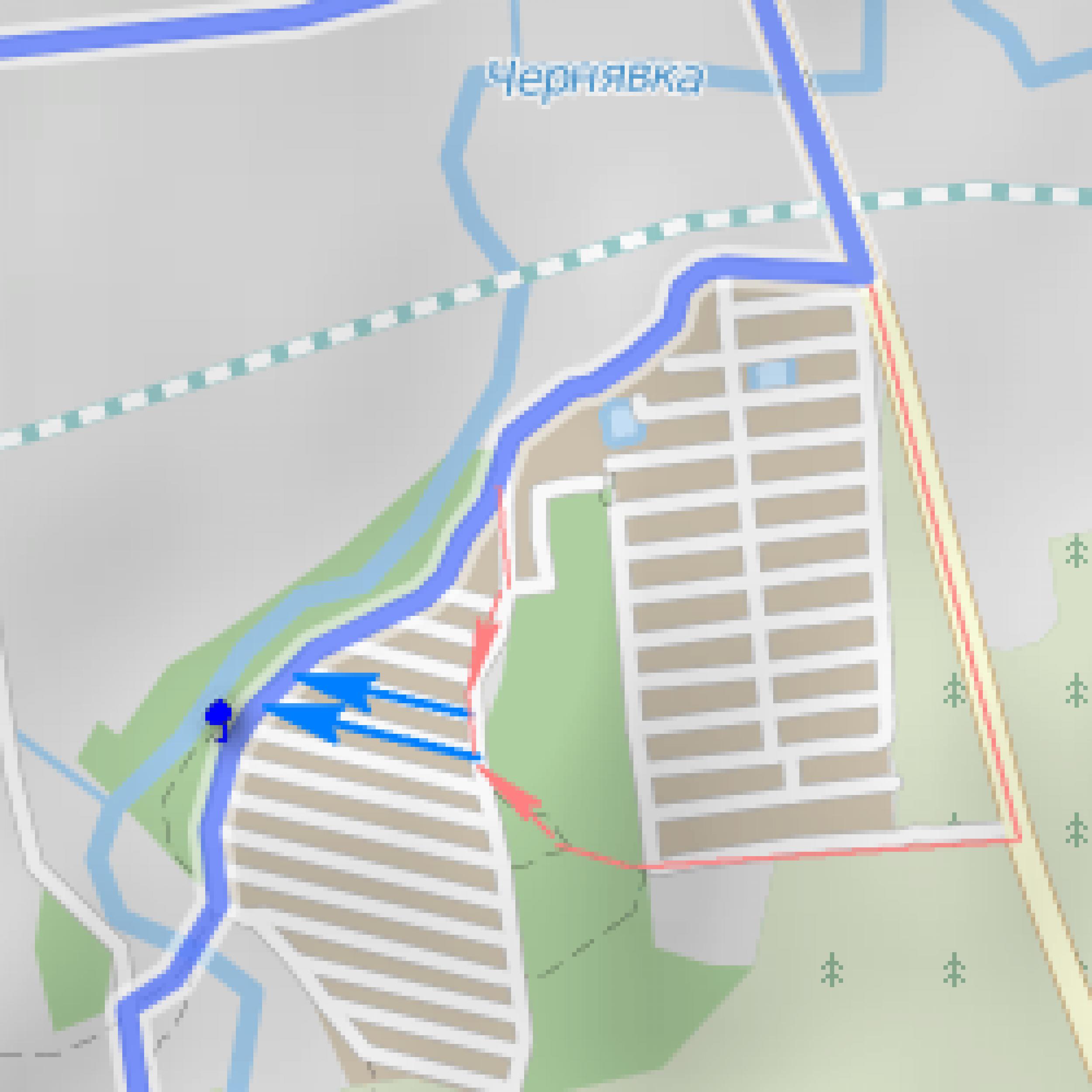 romashka_crop.png
