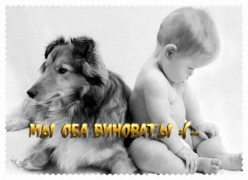 my_oba_vinovaty.jpg