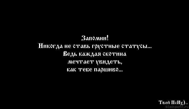 Serga.jpg