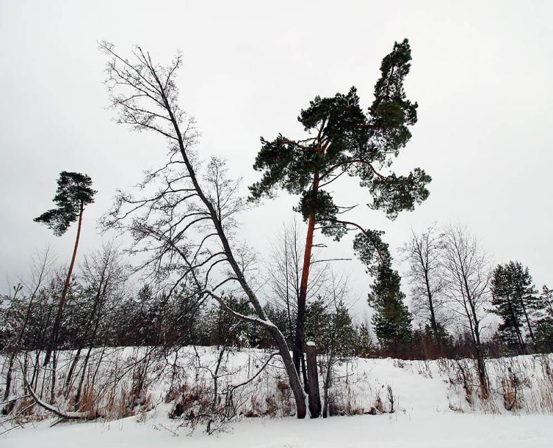 Kopiya_IMG_8789_foto_A.Martsinkevicha.jpg
