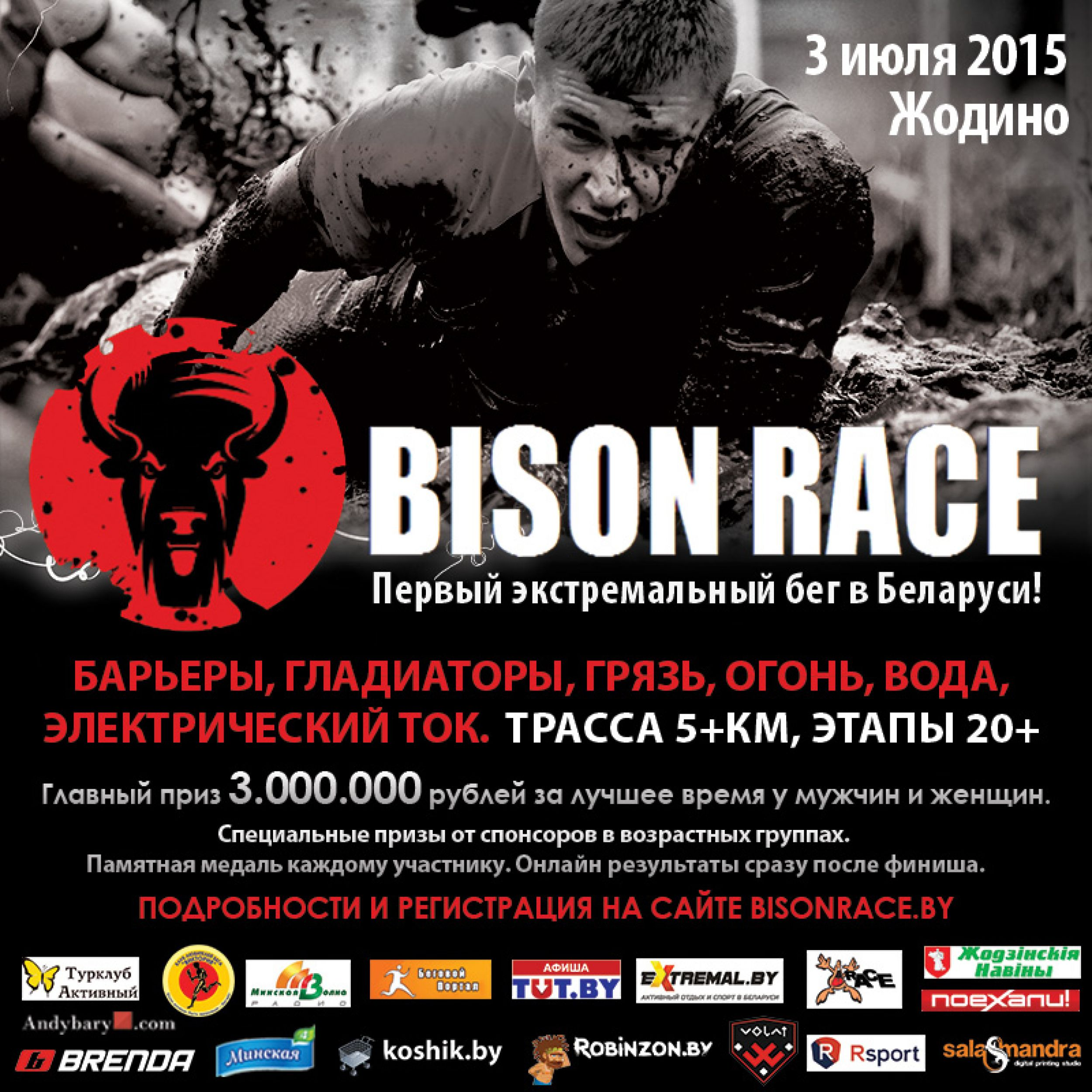 bizon2.jpg