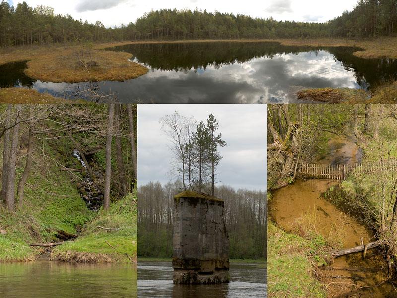 09.05.2007-nature.JPG